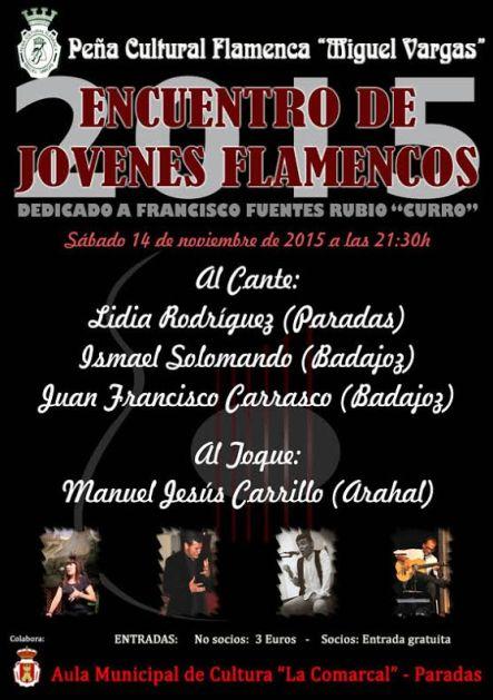 jovenes flamencos